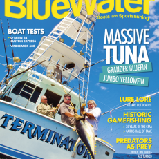 Bluewater Magazine Issue 94 Cover