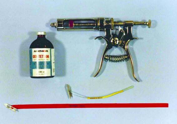 Gun1 JM